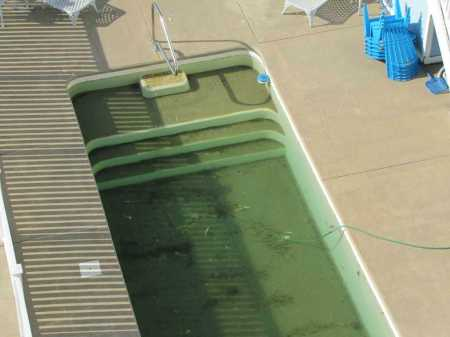 algae pool